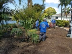 landscaping cape coral fl
